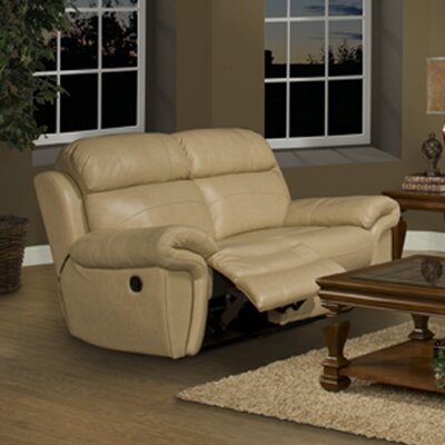 Motion Apollo Leather Reclining Loveseat