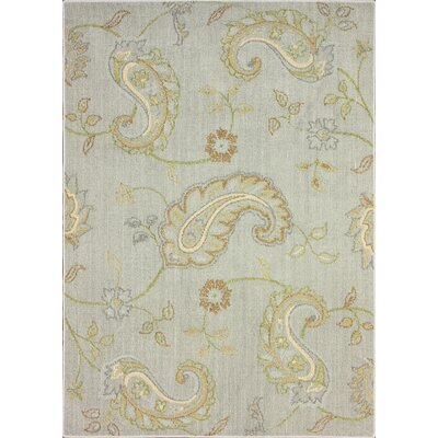 nuLOOM Pop Scratch Paisely Rug