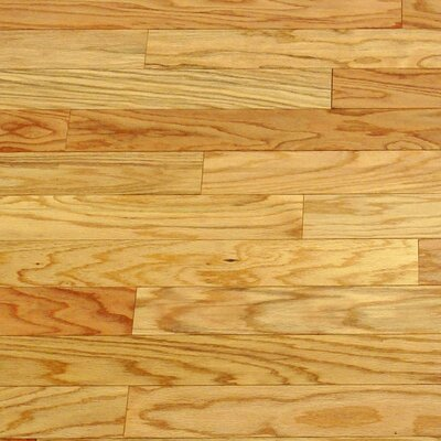 "CFS Flooring Dakota II 5-1/2"" Smooth Engineered Red Oak Flooring in Natural"