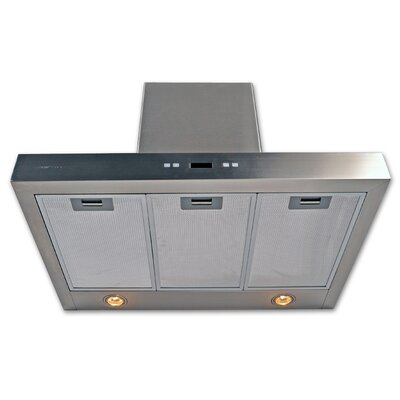 "Cavaliere Stainless Steel 42"" x 20"" Wall Mount Range Hood with 900 CFM"