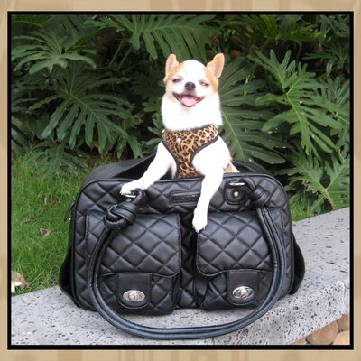 Backbone Pet Chloe Pet Carrier