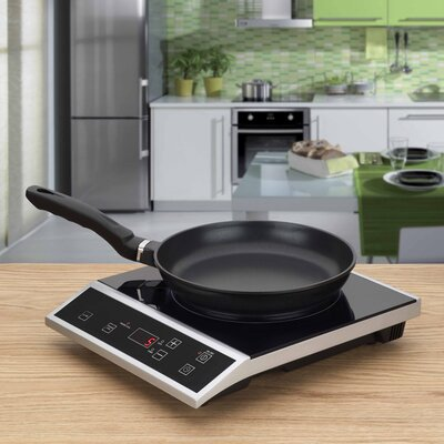 Fagor 2 piece Eco-Friendly Induction Set