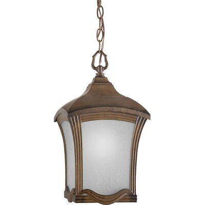 Forte Lighting 1 Light Outdoor Pendant
