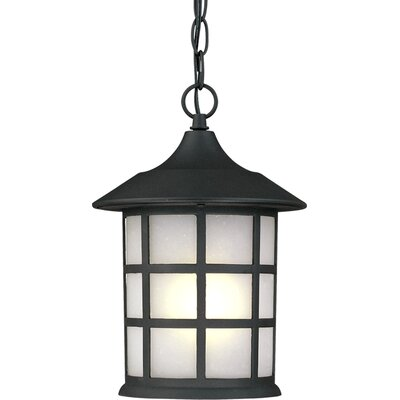 Artcraft Lighting Yorktown 1 Light Outdoor Hanging Lantern
