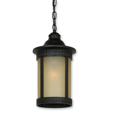 Artcraft Lighting Michigan 1 Light Outdoor Hanging Lantern
