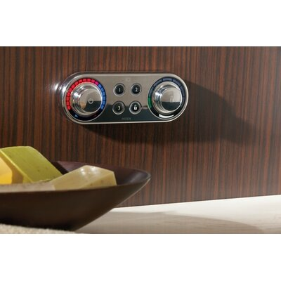 Moen IO Digital Roman Tub Control