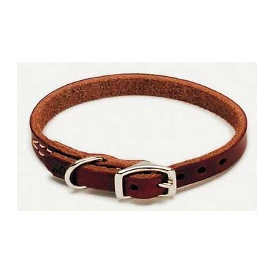 Coastal Pet Products Latigo Leather Dog Collar in Latigo