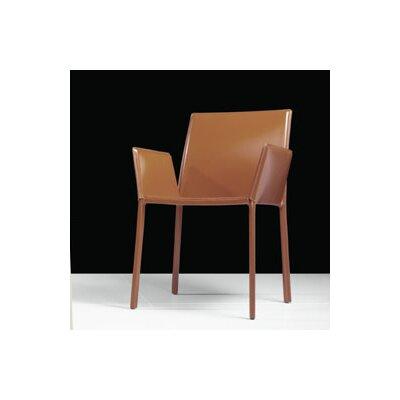 Luxo by Modloft Sanctuary Arm Chair