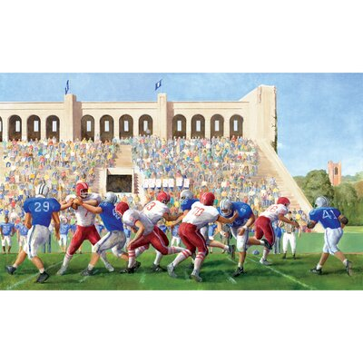Football Stadium Chair Rail Prepasted Wall Mural