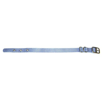 Hamilton Pet Products Single Thick Dog Collar