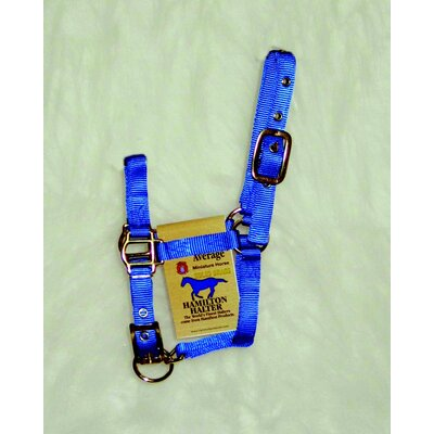 Hamilton Pet Products Adjustable Miniature Halter