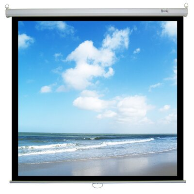 "Recordex Retract Plus Premium Screen - Video Format- 64""x84"" - 87""x116"""
