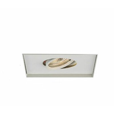 WAC Lighting Recessed Trimless Multi Spot and Housing