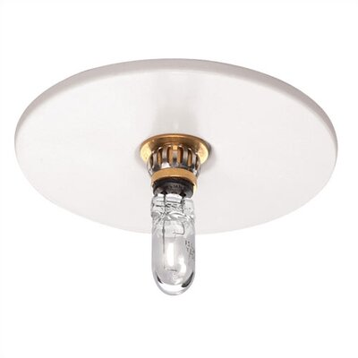 WAC Recessed Beauty Spot Trim and Lamp