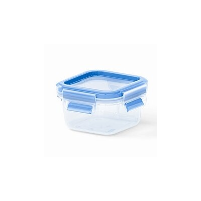 Frieling Emsa by Frieling 8.5 Oz. 3D Food Storage Square Clip and Close Container