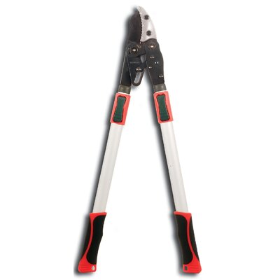 Curved Blade Ratchet Lopper