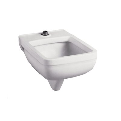 Wall Hung Clinic Service Sink