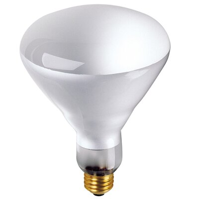 Bulbrite Industries 65W 130-Volt ( 2700K) Incandescent Light Bulb