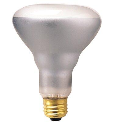 Bulbrite Industries 50W 120-Volt (2700K) Incandescent Light Bulb
