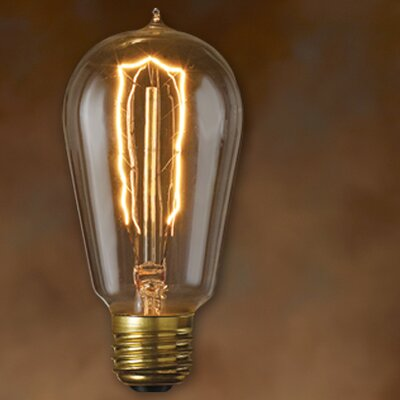 Bulbrite Industries Nostalgic Edison (2200K) Incandescent Light Bulb (Pack of 6)