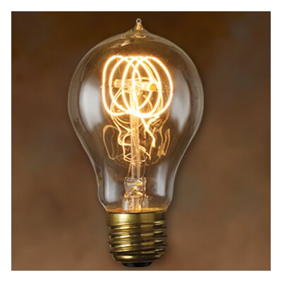 Bulbrite Industries Nostalgic Edison Warm Glow Incandescent Light Bulb (Pack of 6)
