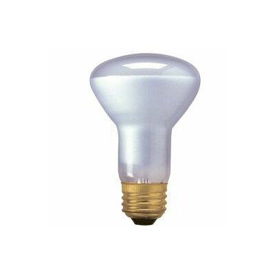 Bulbrite Industries 45W120-Volt (2800K) Halogen Light Bulb