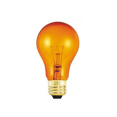 Bulbrite Industries 25W Transparent A19 Incandescent Bulb in Orange