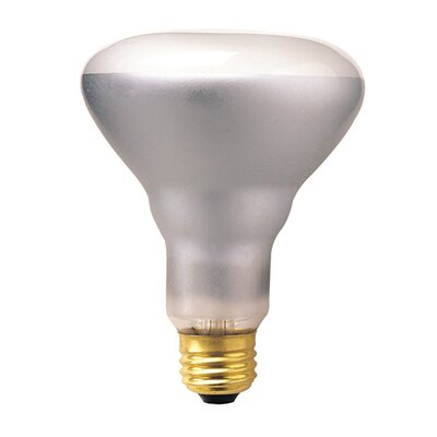 Bulbrite Industries 50W Incandescent BR30 Indoor Reflector Flood Light Bulb with E26 Base in Clear