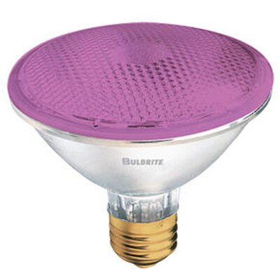 Bulbrite Industries 75W PAR30 Halogen Bulb in Pink