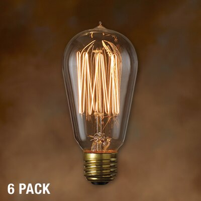 Bulbrite Industries Nostalgic Edison Squirrel Cage-style Incandescent Bulb