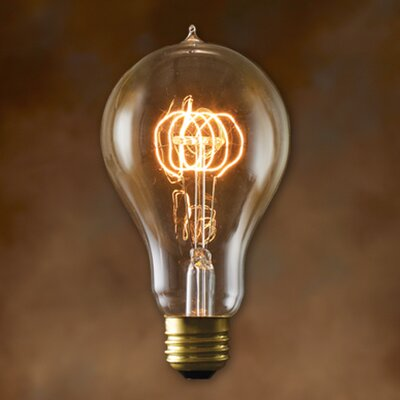Bulbrite Industries A21 Incandescent Nostalgic Edison Bulb