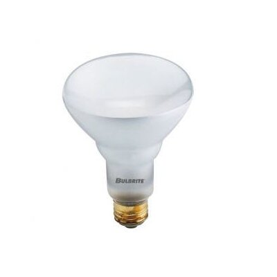Bulbrite Industries 65W Halogen BR40 Reflector Flood Light Bulb in Warm White