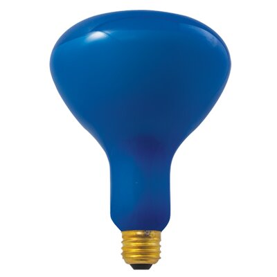 Bulbrite Industries 150W Blue Incandescent Light Bulb (Pack of 6)