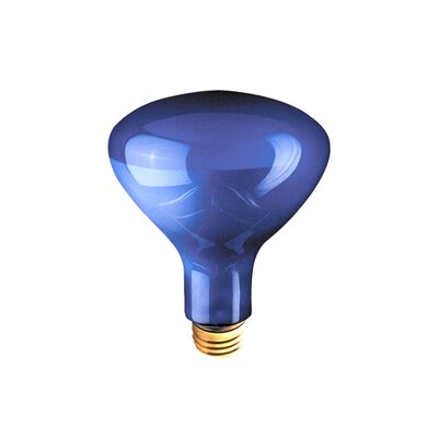 Bulbrite Industries 75W Blue Incandescent Light Bulb (Pack of 6)