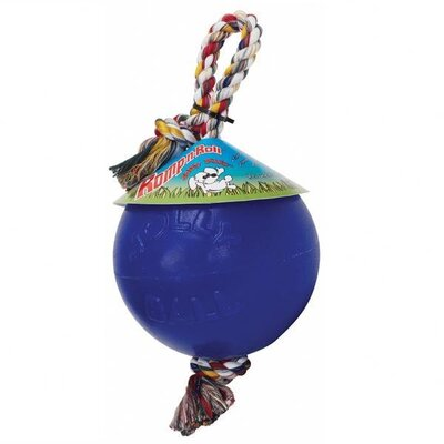 Jolly Pets Romp-n-Roll Ball Dog Toy