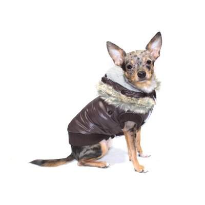 Split Hood Dog Jacket in Brown