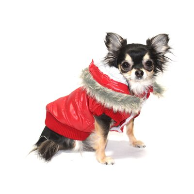 Split Dog Hood Jacket in Red