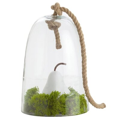 ARTERIORS Home Judd Rope Cloche