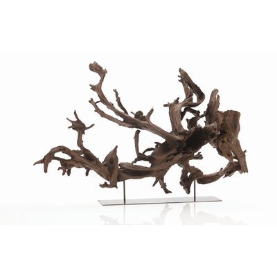 ARTERIORS Home Kazu Dragon Tree Root Sculpture in Natural