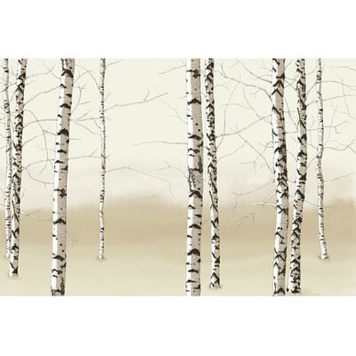 4 Walls Modern Murals Birch Trees Mural in Neutral