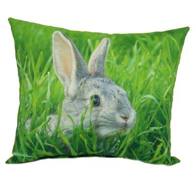 lava Bunny Pillow