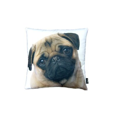 lava Stella Pug Pillow