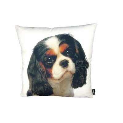 lava Cavalier King James Pillow