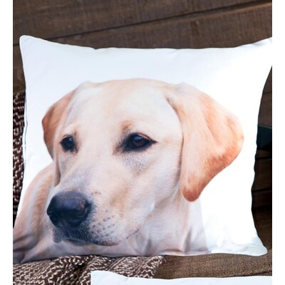 lava Lab Polyester Pillow
