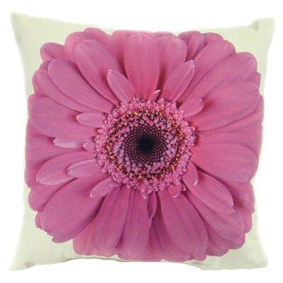 lava Gerbera Pillow