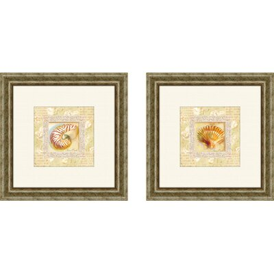 Pro Tour Memorabilia Bath Antique Shell Framed Art