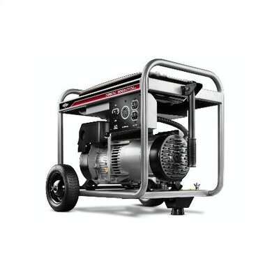 3,250 Watt Portable Gasoline Generator - 30434