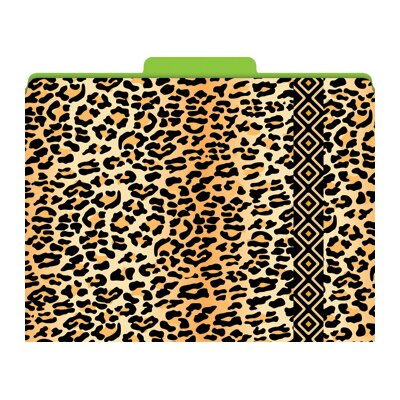 Barker Creek & Lasting Lessons Functional File Folders Leopard