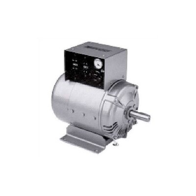Winco Power Systems Two Bearing 8000 W 120/240V PTO Generator