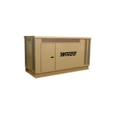 Winco Power Systems 40 Kw Three Phase 120/240 V Natural Gas and Propane Double Fuel Standby Generator